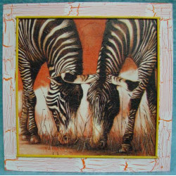 Obrázek čtverec Zebry