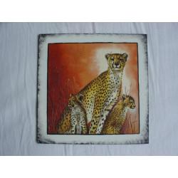 Obrázek čtverec 3 gepardi