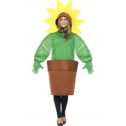 Kostým Slunečnice