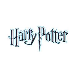 Dětský kostým Harryho dres na Famfrpál