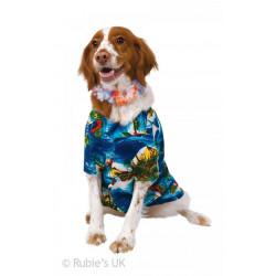 Kostým pro pejska Hawai