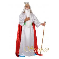 Kostým Galský čaroděj