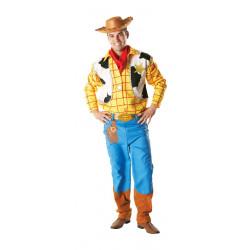 Kostým Woody Toy story